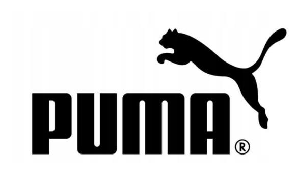 T-shirt koszulka PUMA 581173 02 Logo biała